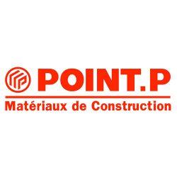 Point-P1